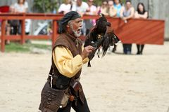 Trainer demonstrates hawks abilitiesenai Stock Images