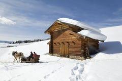 Pferdepferdeschlitten und -halle in den schneebedeckten Bergen Lizenzfreie Stockbilder
