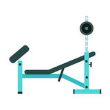 Trainer for fitness and weightlifting in the gym Royalty Free Stock Photography