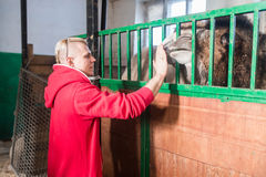 The trainer man in the circus stands in front of the cage with a camel Royalty Free Stock Image