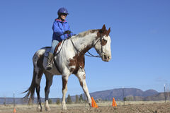 Trainer on Paint Horse. A woman trainer riding a beautiful paint horse stock image