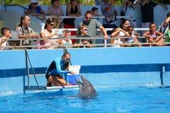 Trainer und Delphin Miamis Seaquarium Lizenzfreies Stockfoto