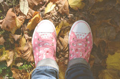 Trainers and autumn leaves. Girl sneakers on autumn leaves royalty free stock photography