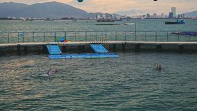 Trainers Swim with Fur-seals in Round Pool of Ocean Circus stock video