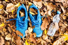 Trainers and water bottle on colorful leaves on the ground. Blue trainers on colorful leaves on the ground. Autumn nature Stock Photo