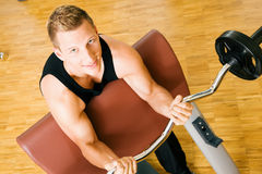 Training with barbell Royalty Free Stock Photos