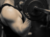 Training barbell gym strength Royalty Free Stock Images