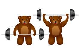 Training bear set Stock Photography