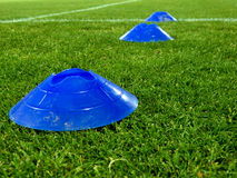 Training blue cones over a grass Royalty Free Stock Images