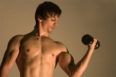 Training of the bodybuilder Stock Image