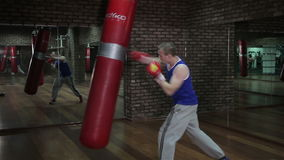 Training a boxer at the gym. Video full HD stock video footage