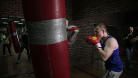Training a boxer at the gym. Video full HD stock video