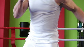 Training boxer stock footage