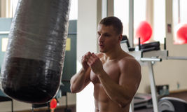 Training boxer Royalty Free Stock Photo