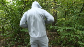 Training in Boxing in the woods. Training in Boxing in a beautiful forest stock footage