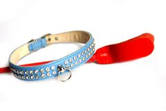 Training Collar and Crop. Blue Submissive training collar jewel studded and red leather crop for adult kinky fun Stock Photography