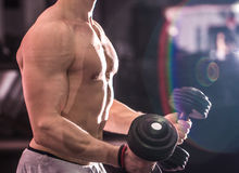 Training cross fit at the gym Royalty Free Stock Image