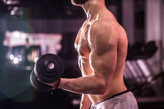 Training cross fit at the gym Royalty Free Stock Photography