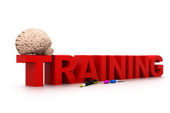 Training der Welt 3d mit menschlichem Gehirn und Stift Lizenzfreies Stockbild