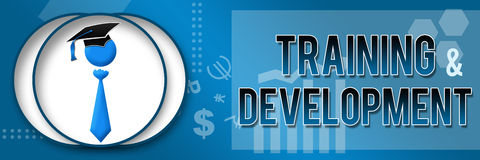 Training and Development Business Theme Banner. Training and Development text over a themed background and related pattern stock illustration