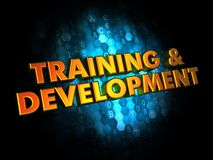 Training and Development on Digital Background. Royalty Free Stock Images