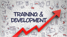 Training And Development Drawn on White Brickwall. 3D. Stock Image