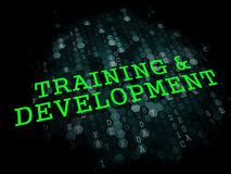 Training and Development. Educational Concept. Royalty Free Stock Image