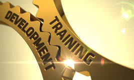 Training Development on Golden Gears. 3D. Training Development on the Golden Metallic Cog Gears. 3D Render stock image
