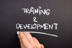 Training and Development Royalty Free Stock Photo