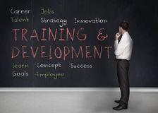 Training and development terms written on a blackboard. Businessman looking at training and development terms written on a blackboard Royalty Free Stock Photos