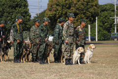 Training Dogs of War Royalty Free Stock Photo