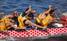 Training for the Dragon Boat Races Stock Photos