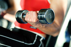 Training with dumbbells in gym Stock Image