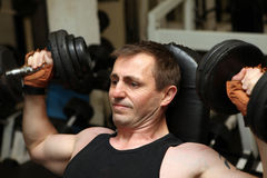 Training dumbbells gym pecks Stock Images