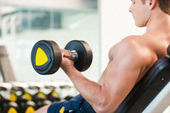Training with dumbbells. Royalty Free Stock Images
