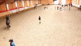 Training equestrian competition. The equestrian event of the year in Romania at Tancabesti, Snagov village stock video