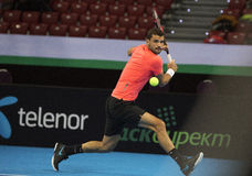 Training on Grigor Dimitrov Stock Image