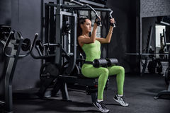 Training in the gym. Fitness girl to lift weights. Fitness train. Er to warm up. Workout on the tone muscles Stock Photos