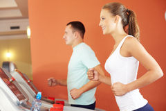 Training in gym Royalty Free Stock Photo