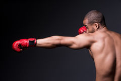 Training his boxing skills. Stock Photos