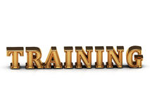 TRAINING inscription large golden letter Royalty Free Stock Images