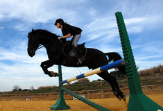 Training of jumping. Young teenager and her friend black stallion: training of jumping Royalty Free Stock Images