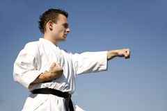 Training of karate champion - kata Royalty Free Stock Image