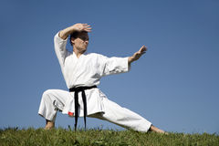 Training of karate champion - kata Royalty Free Stock Photos