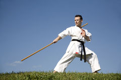 Training of karate champion - kata Royalty Free Stock Photo