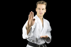 Training karate royalty free stock photography