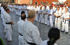 Training Kyokushin Karate Royalty Free Stock Photos