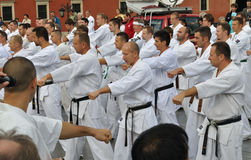 Training Kyokushin Karate Royalty Free Stock Photo