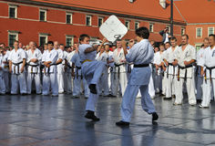 Training Kyokushin Karate Royalty Free Stock Image