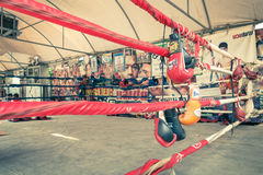 Training muay thai gloves at training ring in Bangkok Stock Images
